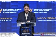 indonesia's coordinating minister for